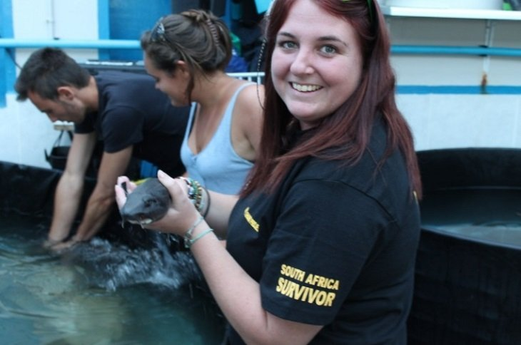 marine conservation volunteer