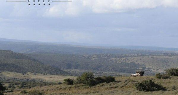 Shamwari conservation volunteering south africa